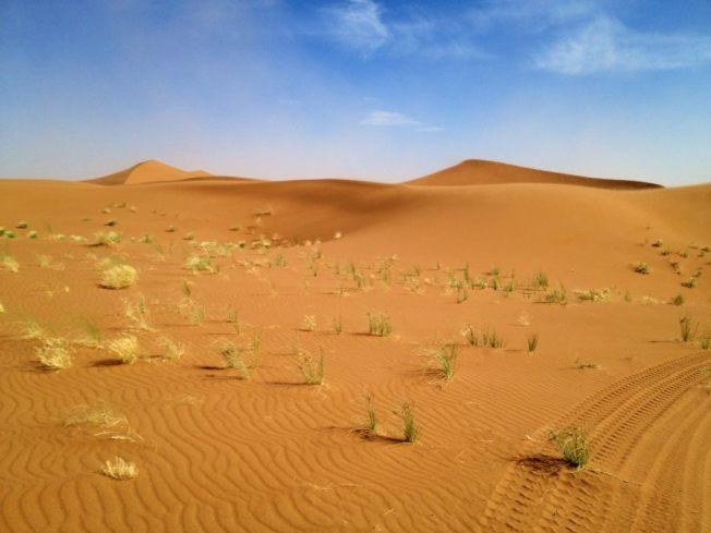 Erg chegaga - Morocco