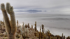 Isla Incahuasi - Bolivia
